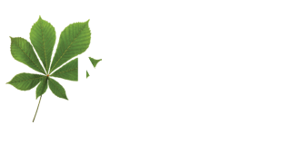 MLD Civil Engineering